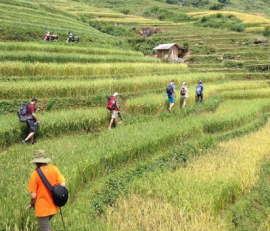 Randonnée - Trekking