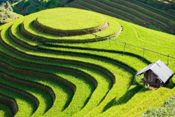 Aperçu du nord Vietnam
