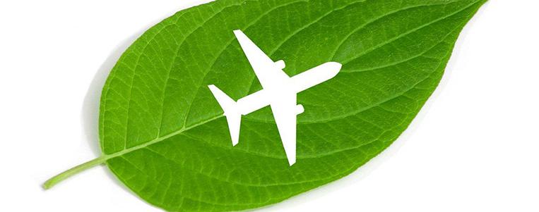 5 astuces pour un voyage écologique