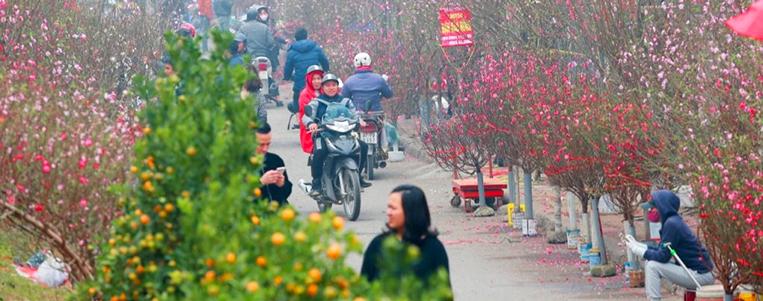 Circuits Fêtes de fin d'année au Vietnam (décembre, janvier, février)