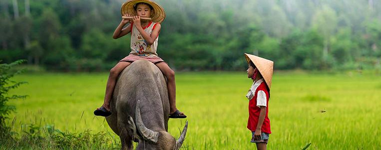 5 films à regarder avant de voyager au Vietnam