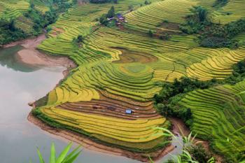 Circuit découverte des rizières du Nord-Ouest