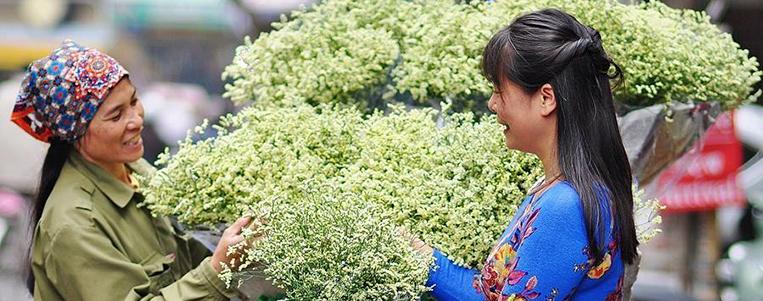 Lys blanc: La reine des fleurs du mois d'avril à Hanoi