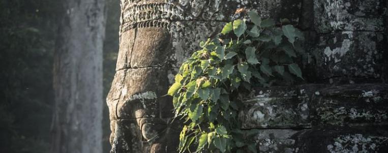 Sites Incontournables des pays voisins du Vietnam: le Cambodge (2019)