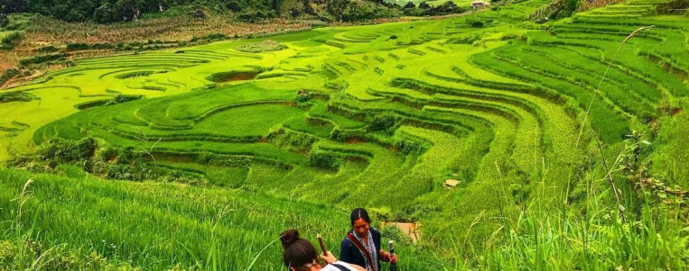 Voyage en haute saison (octobre, novembre, décembre) au Vietnam