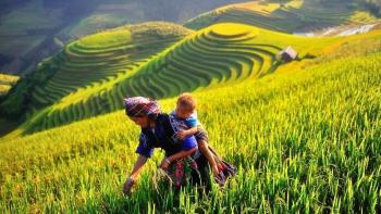 Vietnam à la profondeur