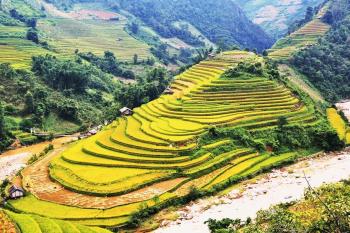 Vietnam Nord autrement